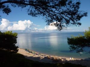 private-beach-villa-oasis-1