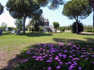 Garden Villa Oasis