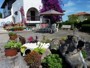 villa-oasis-garden-16