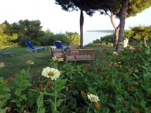 villa-oasis-garden-22