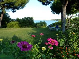 villa-oasis-garden-23