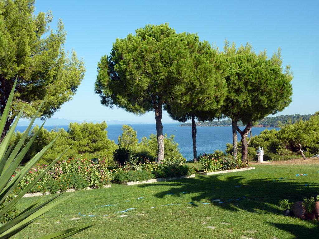 Villa Oasis Garden 3 Villa Oasis