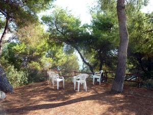 villa-oasis-garden-4