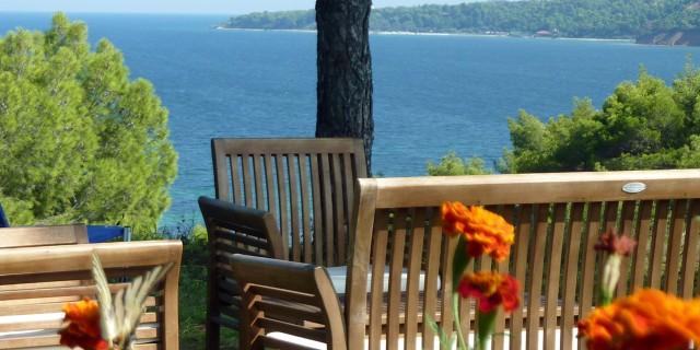 Garden of Villa Oasis Halkidiki
